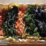 خشک کن صنعتی میوه و سبزی